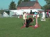 Lucien et son Briard en concours d'agility