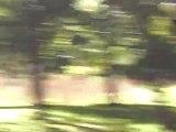 la parc mont royal lac des castors