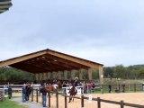 Concours-equitation-muret-31-10-2010