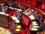 Le conseiller territorial en débat dans l'hémicycle