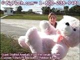 BigPlush.com Large pink teddy bear big plush valentine bear