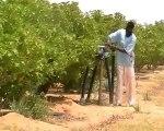 Accaparement des terres au Sénégal