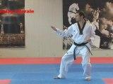 Taegeuk Sam Jang - 3 Forma Taekwondo WTF