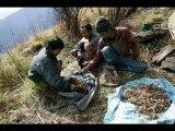 Travel To Care Tushita Trek Package Holidays Pokhara Nepal