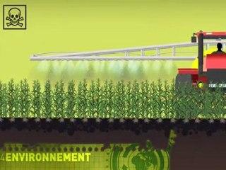 OGM expliqué par Greenpeace