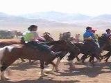 Naadam : tour de chauffe avant la course de chevaux