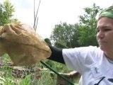 A la découverte des Jardins de Noé - Noé Conservation