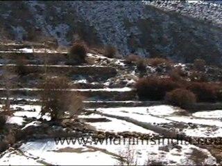 ladakh_93.mov