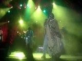 Tiken Jah Fakoly Live @ Montjoux Festival 2011 - Ayebada + L'africain