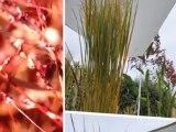 Aménagement jardins, création et entretien jardins, www.lesbojardins.com réseau de paysagiste