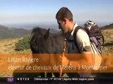 Le cheval de Merens (Ariège)