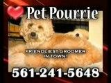 Dog Grooming, Boca Raton, Pet Pourrie - Pet Groomer, Boca, F