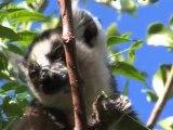 Lafuma soutient le projet Makay Nature à Madagascar