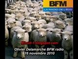 Olivier Delamarche BFM radio 16 novembre 2010 - 16/11/2010