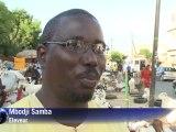 Sénégal : 500 000 moutons sacrifiés pour la Tabaski
