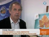L'agglomération de Montpellier fête ses vignes!