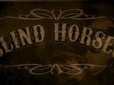 Zik Zag Zoom Blindhorses
