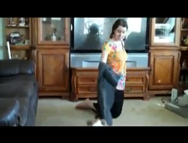 Seattle Dog Training What Dogs Can Do…AMAZING