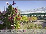 Garten-Center Grünau AG, Dulliken, Blühende Ideen für Haus und Garten