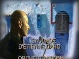 SAUDADE-ETIENNE DAHO PAR JP