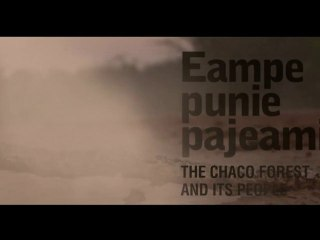Eampe Punie Pajeami - The Chaco Forest and Its People