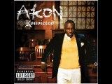 David Guetta Akon life of A Superstar
