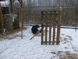 Danaé aime la neige