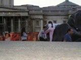 London, England travel: Westminster Abbey / Trafalgar