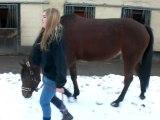 Ma juju dans la neige :)