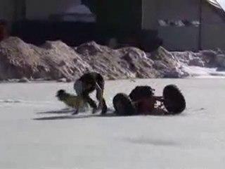 Régis et son pote font du buggy sur glace !