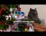 Sommaire émission 30 Millions d'Amis 19/12/2010