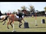 concours du dimanche 17 octobre au logis du poney