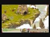 vidéotest dofus [combat] part-2