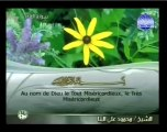097. Al-qadr - La destinée