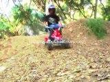 Pocket Bikes, Mini Bikes -  Cobra S4 50cc Mini 4-Wheeler Qu