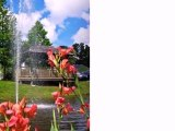 Homes for Sale - 188 Midland Pkwy - Summerville, SC 29485 - Lide Bailey