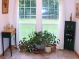 Homes for Sale - 255 Fiddie St - Summerville, SC 29485 - Debra Walters