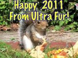 """""""The Ultra Fur New Year's Eve Party"""" : Ultra Fur"""