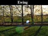 Tree Removal-Trimming Service |Trenton, Ewing, Lambertville