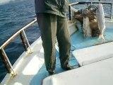 kuşadası balık turu yasmin teknesi