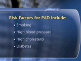 Peripheral Arterial Disease : What are the risk factors for developing peripheral arterial disease?