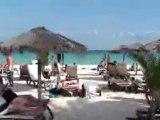 mamita's playa! playa del carmen