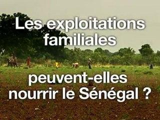 L'agriculture familiale peut-elle nourrir le Sénégal ?