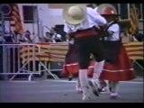 1989 Feux de la St Jean et Sardanes