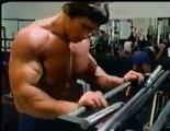 body building - arnold schwarzenegger - biceps training