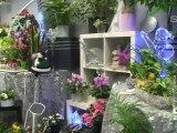 Compositions Florales – Bourg en Bresse – Ain