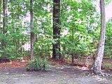 Homes for Sale - 110 Timberlane Dr - Summerville, SC 29485 - Roger Sample