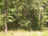 Homes for Sale - 193 Ashley Dr - Summerville, SC 29485 - Dwayne Richter