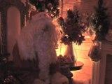 Ouverture des fêtes de Noël au Plessis
