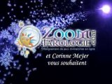 Cours voyance tarot 2011 Tarologie Oracle belline Oracle gé